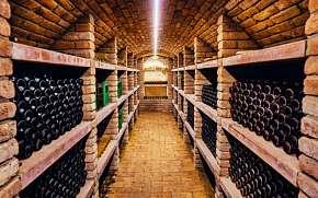 32% Jižní Morava: 2-3 denní vinařský pobyt pro DVA ve…