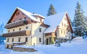 34% Šumava: 3-6 denní pobyt pro DVA v Penzionu Alpský…