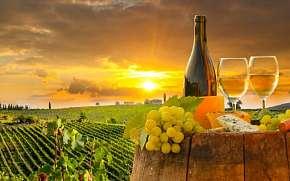 49% Jižní Morava: 3-6 denní vinařský pobyt pro DVA v…
