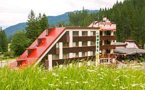 43% Nízké Tatry: 3-8 denní wellness pobyt pro DVA v…
