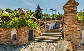 42% Jižní Morava: 3 denní pobyt pro DVA ve vinařství…