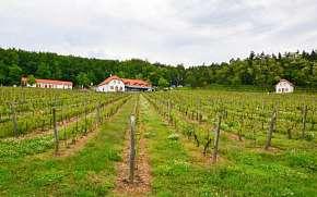 30% Vysočina: 3–4 denní vinařský pobyt pro DVA v…