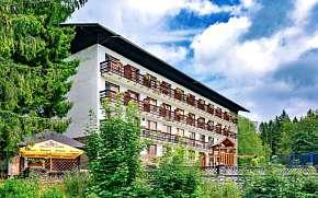 35% Šumava: 3-6 denní wellness pobyt pro DVA v Hotelu…