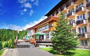 34% Tatry: 6-8 denní wellness pobyt pro DVA v Hotelu…