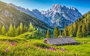 37% Rakousko: 4-8 denní pobyt pro DVA v Penzionu…