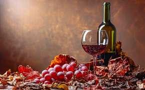 39% Jižní Morava: 3 denní vinařský pobyt pro DVA v…