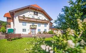 46% Rakousko: 3–8 denní pobyt pro DVA u Salzburgu v…