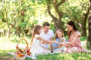 Sleva 10% - Rodinná dovolená pro 8 osob na Hriňovských lazoch v Chalupě na Zelené louce, dlouhá…