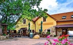 46% Jižní Morava u Znojma stylově v Penzionu U Tří…