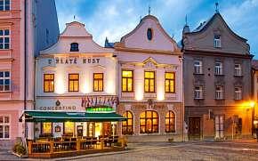 42% Jindřichův Hradec: Hotel Concertino - Zlatá Husa …