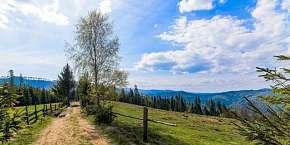 26% Od jara do zimy v Chatě Barborka v Horní Bečvě s…
