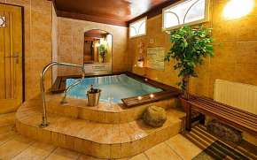 38% Špindlerův Mlýn v Alpském Hotelu ***+ s…