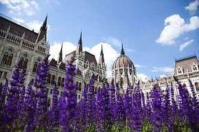 49% Mediterran Hotel Budapest **** s neomezeným…